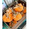 Декоративна есенна тиква ръчна изработка